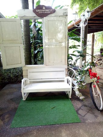 Green Forest Resort: IMG20180321085524_large.jpg