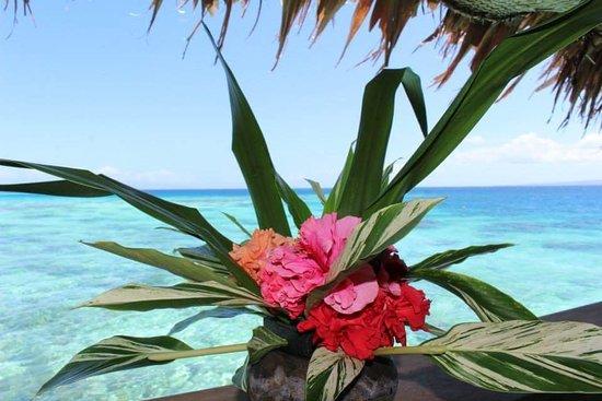 Gizo, Islas Salomón: FB_IMG_1521638551497_large.jpg