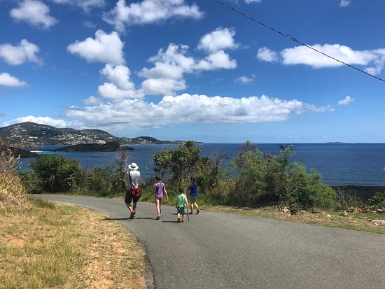 Virgin Islands Campground: Walk back from Honeymoon Beach (very short section on quiet road, the rest in a trail)