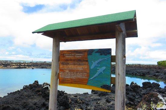 Puerto Villamil, Ecuador: sign