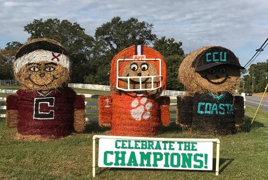 Anderson, Karolina Południowa: Celebrate the Champions Theme 2017 Denver Downs Farm