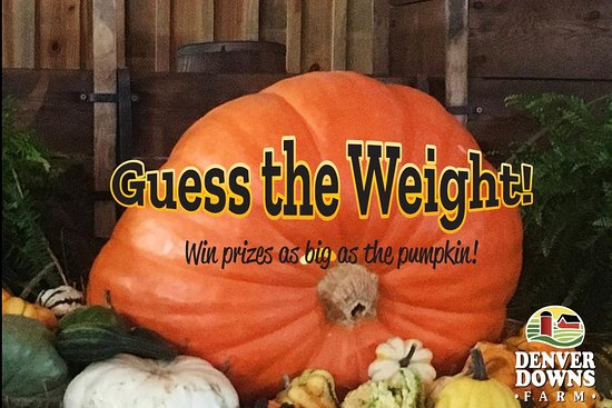 Anderson, Carolina del Sur: Giant Pumpkin Weight Contest