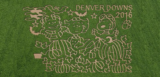 แอนเดอร์สัน, เซาท์แคโรไลนา: 2016 Denver Downs Farm Maze Design