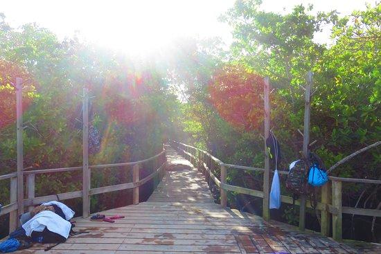 Puerto Villamil, เอกวาดอร์: end of trail