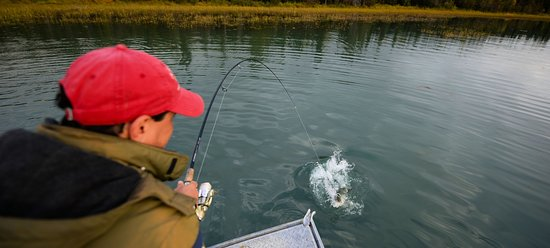 Sterling, AK: World class Alaska fishing with our special guides
