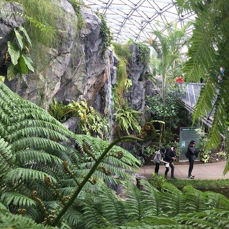 shinjuku gyoen national garden tripadvisor save