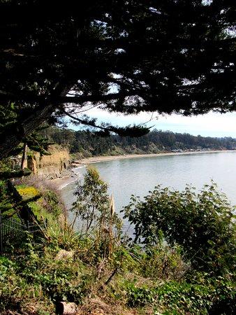 Monarch Cove Inn: Cliffs and New Brighton State Beach