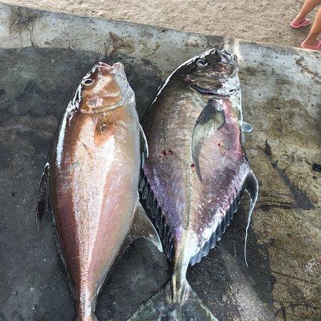 Marietas Punta Mita