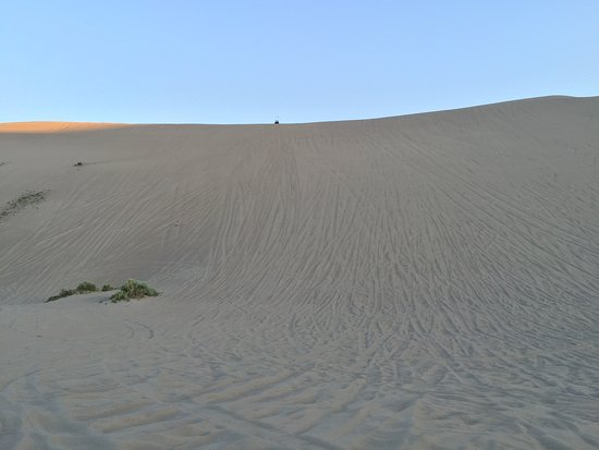 Saint Anthony, ID: One of the many steep sand dunes. This place is amazing!
