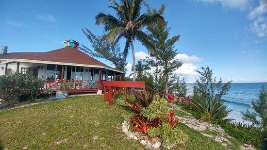 North Palmetto Point Picture