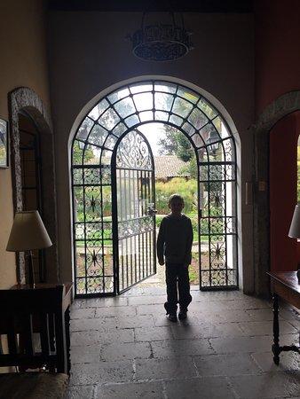 هوستيريا لا سيينجا صورة فوتوغرافية