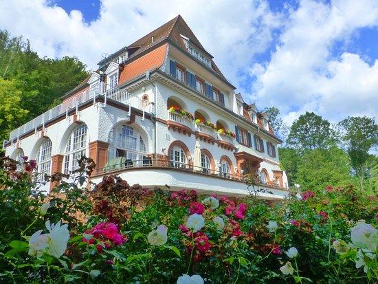 Annweiler am Trifels, Deutschland: Rosensommer 2016 am Kurhaus Trifels