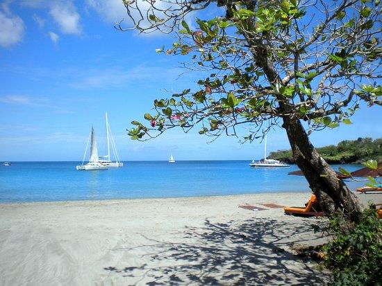 Ti Kaye Resort & Spa: Anse Cochon beach.