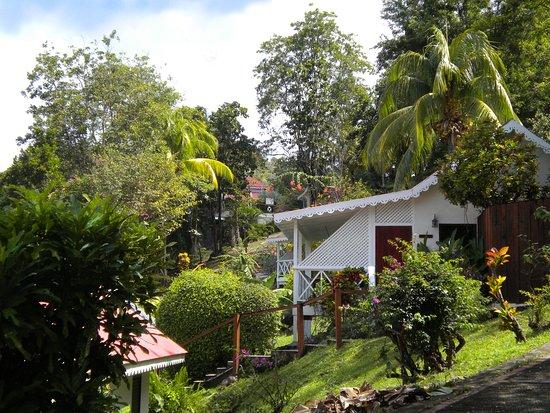 Ti Kaye Resort & Spa: The grounds were like a little village.