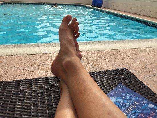 Rm 116 comfort inn santa monica west los - Salt water swimming pools los angeles ...