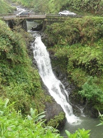 Hana Highway - Road to Hana: Another waterfall along the road