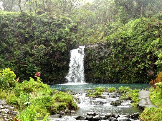 Hana Highway - Road to Hana: The prettiest Falls along the road to Hana