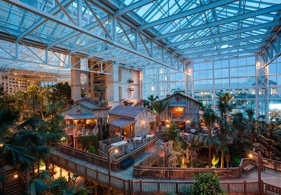 Gaylord Palms Resort & Convention Center: Lobby