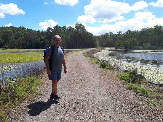 Mooloolah Valley, Australie : Trail road leading in
