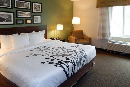 Evergreen, AL: Guest room