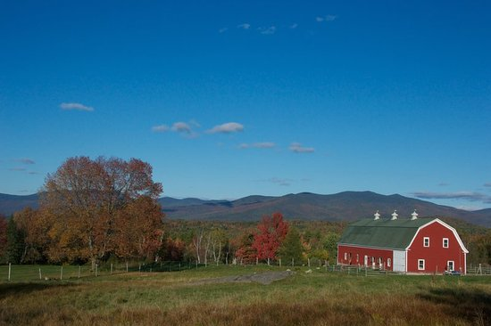 Whitefield, NH: Other