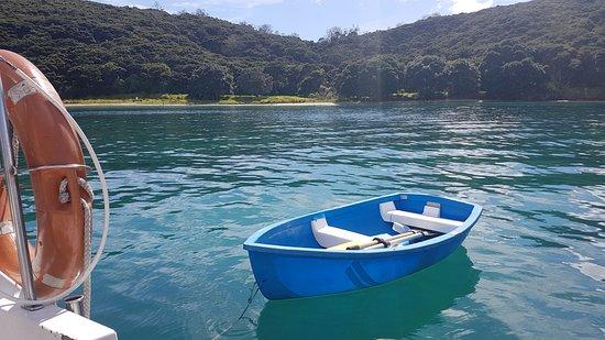 Opua, Νέα Ζηλανδία: Dinghy waiting to take us ashore