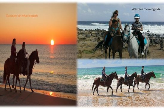 Aruba Private Horseback-Riding Beach...