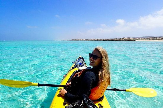 Ningaloo Reef Kayaking and Snorkeling ...
