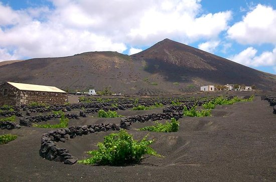 Lanzarote La Geria Vineyards Små...