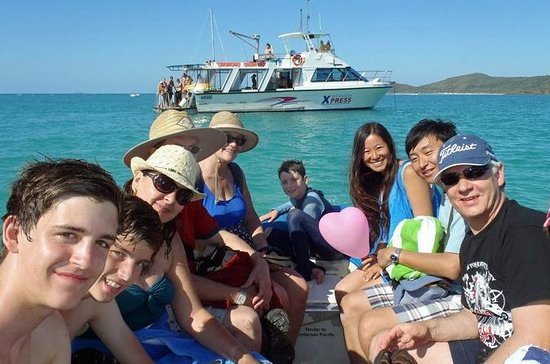 Whitehaven Beach: Barbecue, Hill...