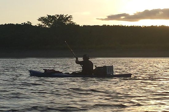 Bio-Luminiscencia y Sunset Kayak Tour