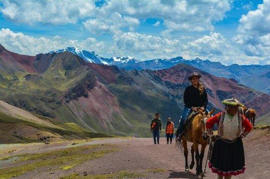 Rainbow Mountain Ride Horse