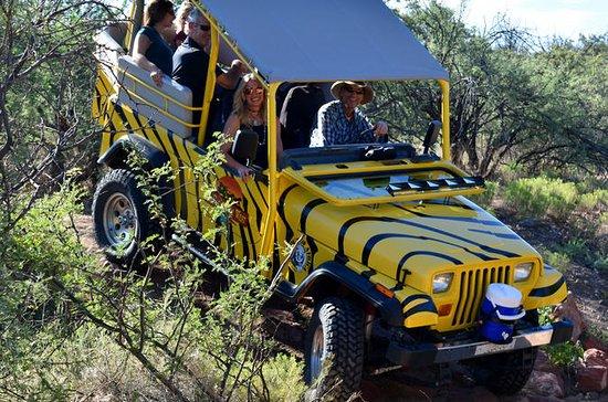 Ingresso in jeep e parco