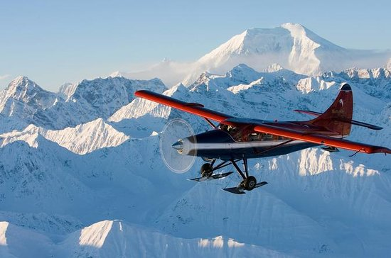 Grand Denali Flightseeing tour from...