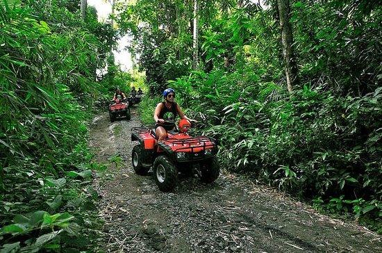 Bali ATV Ride y paquetes turísticos...