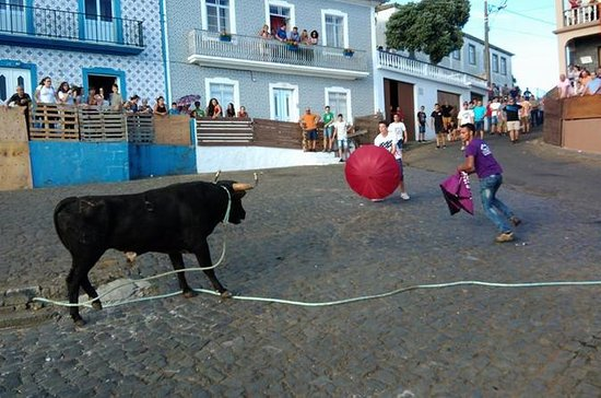 Bullrun traditionnel