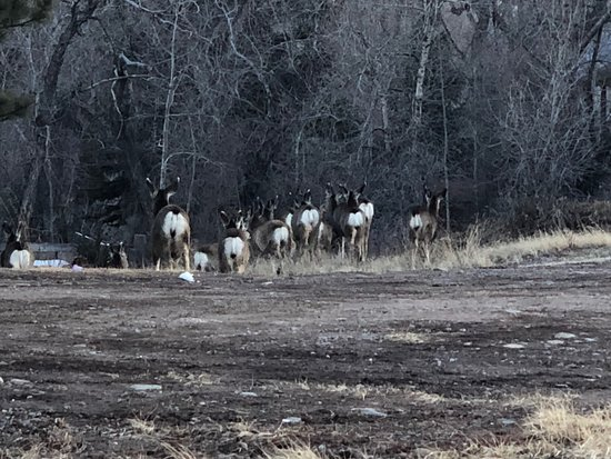 South Fork, CO: Right outside the hotel.