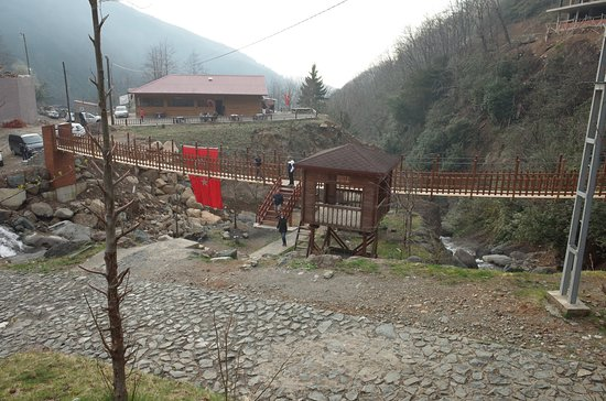 Cayeli, Турция: 滝の下流に架かるつり橋