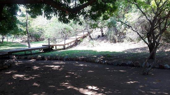 Lake Malawi National Park Picture