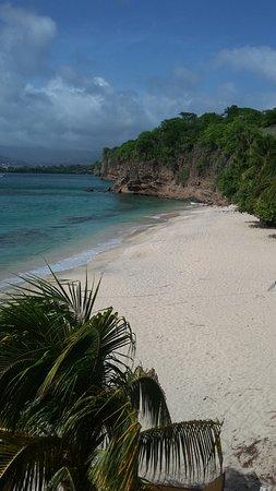 Grenadian by Rex Resorts Photo