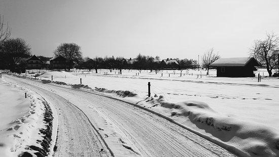 Brezje in winter