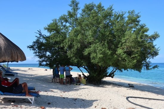 Balicasag Island ภาพถ่าย