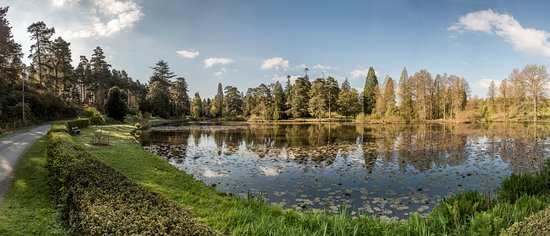 Bedgebury National Pinetum and Forest
