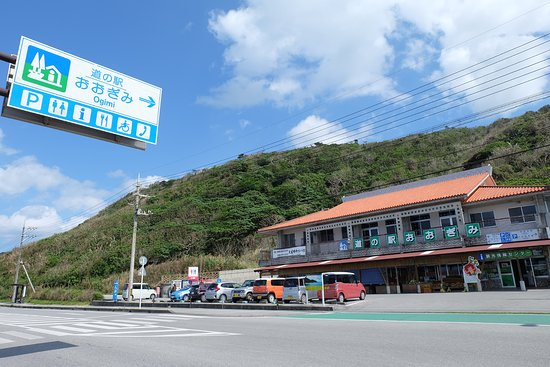 Michi no Eki Ogimi