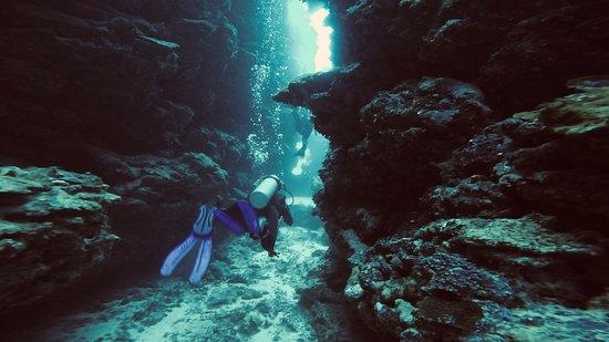 Pacific Dive: Tutuba point