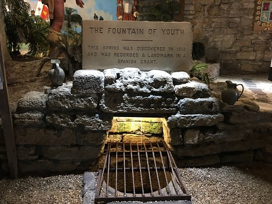 Fountain of Youth Archaeological Park: The Fountain of Youth