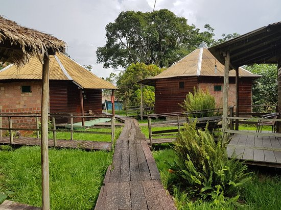 Gero Tours Manaus