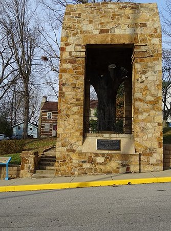 Corydon, IN: monument around the elm