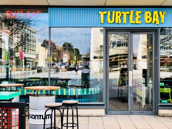 Free starter when you download the turtle bay app | student hut.