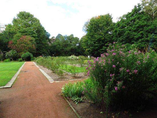 Sapporo, Japonya: 草本植物分類區